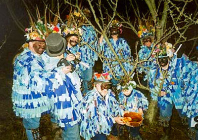 Ostlers Award Winning Organic Apple Vinegar Cider ACV with the Mother Old Wassail 2012
